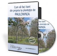 Paulownia: afacerea din care castigi 30.000 euro/ha