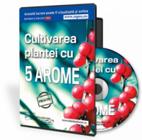 Cultivarea plantei cu 5 arome