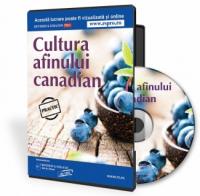 Cum sa faci bani frumosi din cultivarea afinelor canadiene