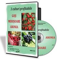 3 culturi profitabile - Goji, Merisoare, Aronia