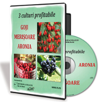 Goji, Merisoare, Aronia - Fructele miraculoase ce te pot imbogati