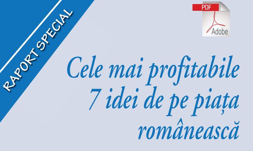 cele mai profitabile 7 idei de afaceri din Romania