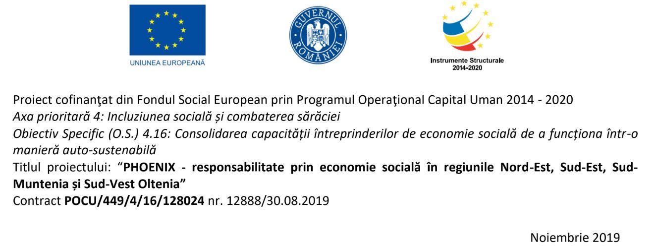 fonduri nerambursabile afaceri sociale