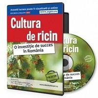 Cultura de ricin. O investitie de succes in Romania