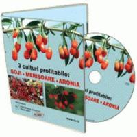 Goji - Arbustul care iti aduce profituri uriase!