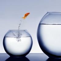 ACUM - Sprijin financiar pentru investitiile intreprinderilor mici si mijlocii