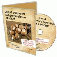 Cultiva ciuperci Champignon! Noi te invatam cum sa procedezi ca sa ai profit cat mai mare!