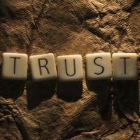 Cum castigam increderea clientilor si potentialilor clienti in online?