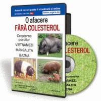 Cresterea porcilor in sistem ecologic - Oportunitatea de afacere pentru un viitor stralucit!