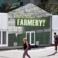The Farmery - Ferma Urbana care ne-a pus pe jar!