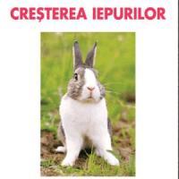 Crescatorie de iepuri - O afacere de demarat in 2013!