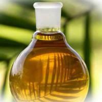 Ulei de palmier - beneficii, oportunitati, afaceri