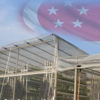 Prima ferma verticala low-water, low-energy se infiinteaza in Singapore!