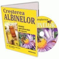 Ferma apicola - Cele mai cautate tipuri de miere!
