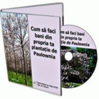 Detalii pe care trebuie sa le stii despre afacerile cu arbori Paulownia!