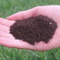 Ferme de rame - Vermicultura