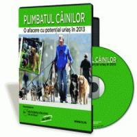 O afacere cu potential urias in 2013 - Plimbatul cainilor!
