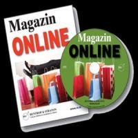 In 2013 vreti un magazin online? Iata ce sa vindeti!