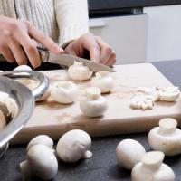 Bolile si daunatorii care produc pagube in cultura ciupercilor Champignon!