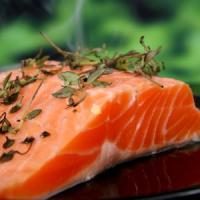 Afaceri online pentru cei pasionati de pescuit: Magazin online de pescuit!