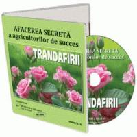 Secretele unei afaceri profitabile, cu trandafiri de dulceata!