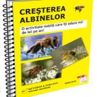 Cresterea albinelor - Activitatea care iti aduce profituri serioase!