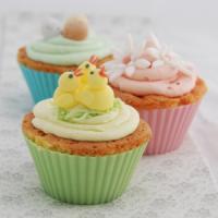 Cupcake-uri, afacere pentru viitor