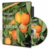 Trucuri si sfaturi pentru cultivarea pomilor fructiferi cu succes!