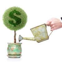 5 idei de afaceri cu bani putini in anul 2014, afaceri profitabile in Romania!