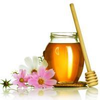 Atentie, apicultori: Apar noi modificari legislative in domeniul apiculturii