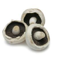 Salaj: 7000 de tone de ciuperci, anual!