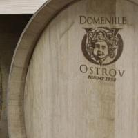 Afaceri de succes in Romania: 7,5 milioane de litri de vin de calitate si planuri de dezvoltare