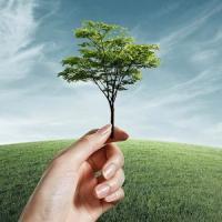 O posibila solutie pentru cresterea randamentului productiilor agricole