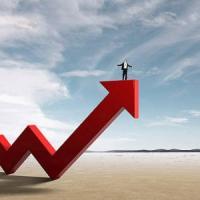 5 idei de afaceri pentru un an cat se poate de profitabil