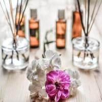 Cosmetice 100% naturale - afacerea anului