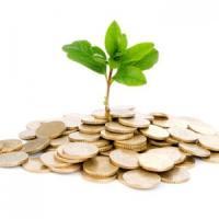 FNGCIMM: 20 de banci s-au inscris in Programul de garantare a creditelor pentru IMM-uri