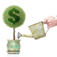 Ai 5000 de euro si teren arabil? Iata 3 idei de afaceri pe care le poti porni!