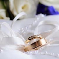 O afacere de vis: Obtine profit din vanzarea de planificatoare de nunti!