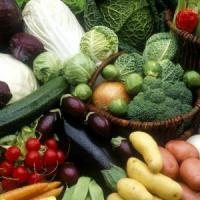Curs acreditat de agricultura ecologica, 10-13 mai 2014