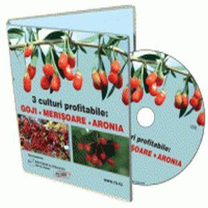 Cum sa scoti bani dintr-un teren? Cultiva arbusti fructiferi!