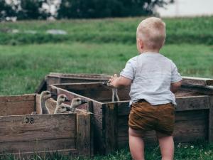 Fii in satul tau fruntas si devino un antreprenor de succes